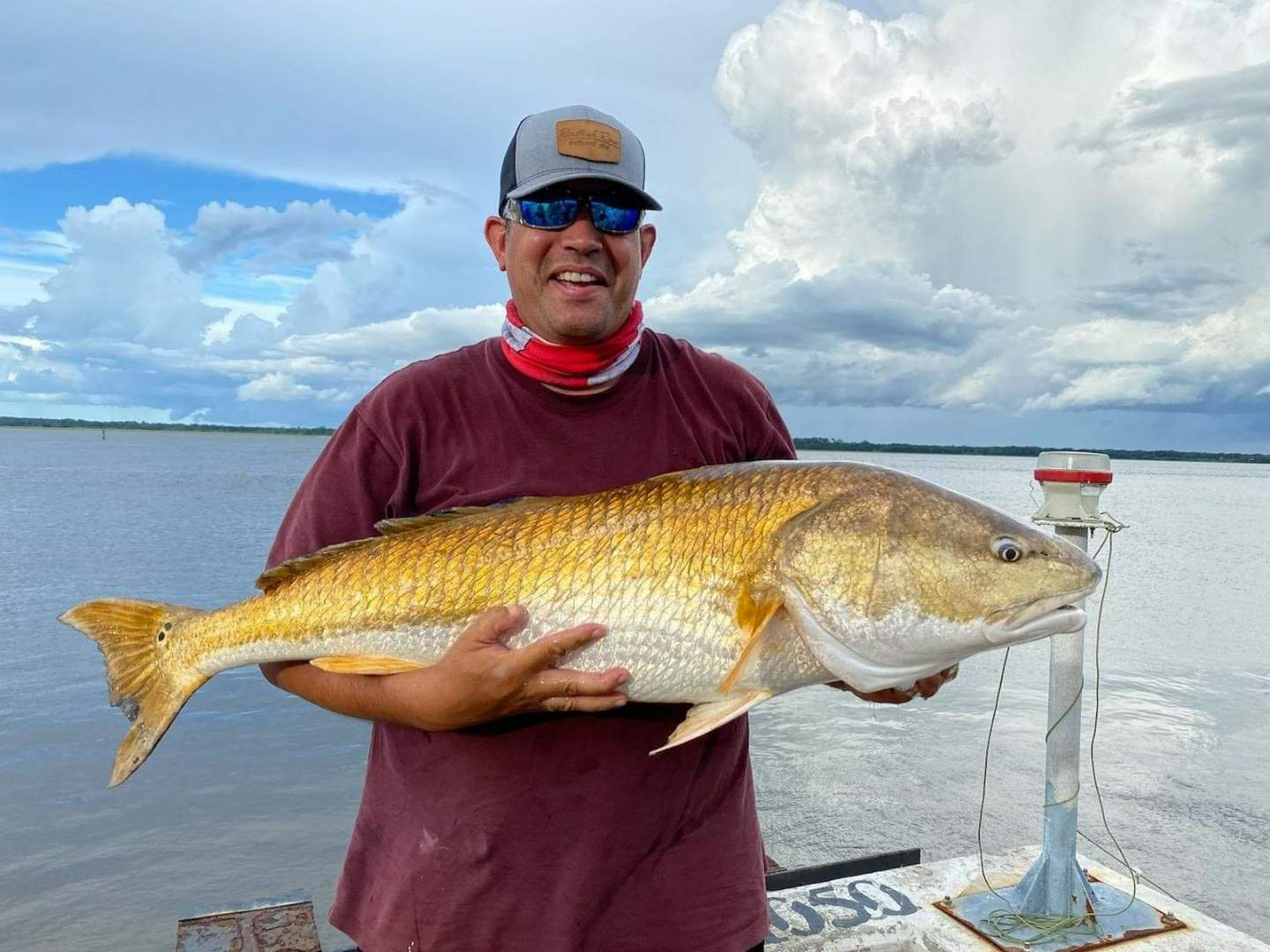 Giant Red Drum Fish